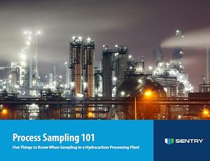 Process 101 eBook